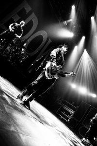 Shinedown 20